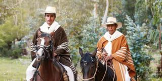 Peru in Action