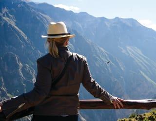 Observación de aves en el cañón del Colca