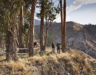 Caminatas y excursiones en el cañón del Colca