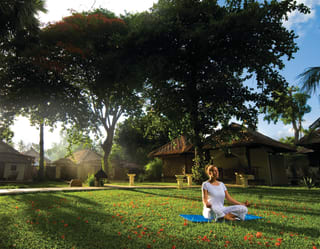 Yoga, Tai Chi and Meditation