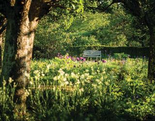 Garden at Belmond Le Manoir aux Quat'Saisons