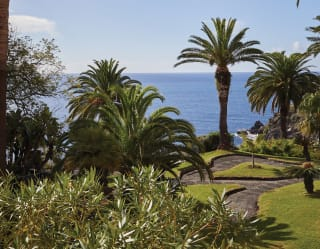 Palm trees, shrubs and a manicured lawn in a garden overlooking the sea