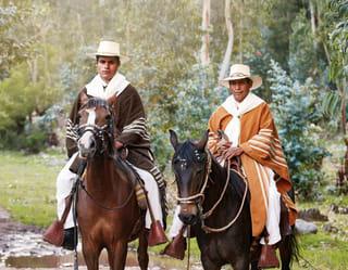 Espectáculo de caballos peruanos de paso