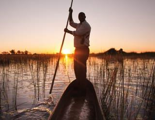 Homem guiando uma canoa tradicional do mokoro pelos pântanos