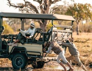 Safari Game Drives