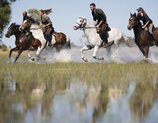 Horseback & Helicopter Safari, Game Viewing, Elephant