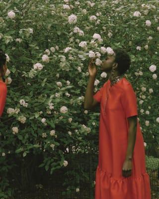 Mulher com um vestido vermelho cheirando as rosas de uma roseira alta