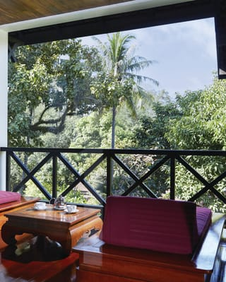 Hotel room balcony with sunbeds overlooking lush jungle gardens